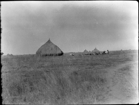 Nuer homestead