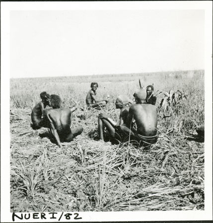 Nuer men preparing garden