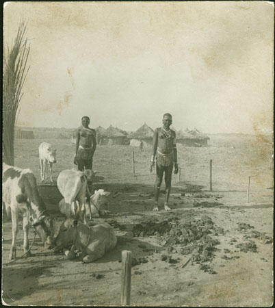 Mandari cattle camp